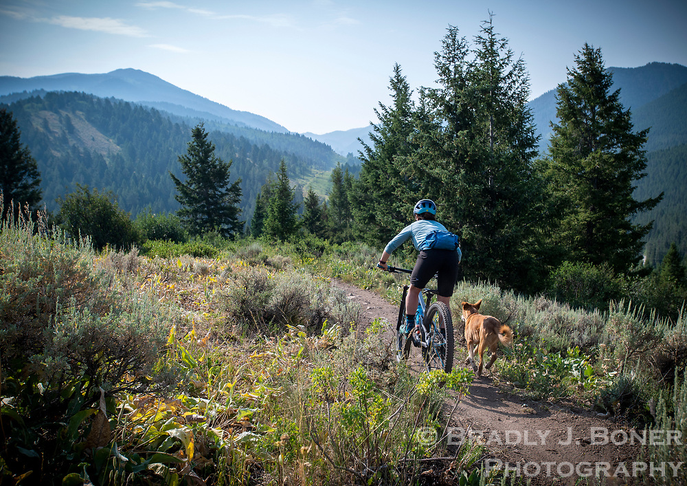 Professional mountain biker and endurance athlete Kait Boyle, of Victor, often trains at the Southern Valley Trail System in Teton Valley with her pup, Hank.
