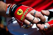 May 20-24, 2015: Monaco - Ferrari fan