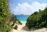 Path to the secluded Saline Beach, St. Barthelemy, FWI