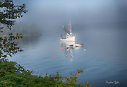 Crown Royal and Audubon Boats in Fog