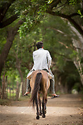 Rear view shot of a man riding a horse, Ometepe Island, Nicaragua