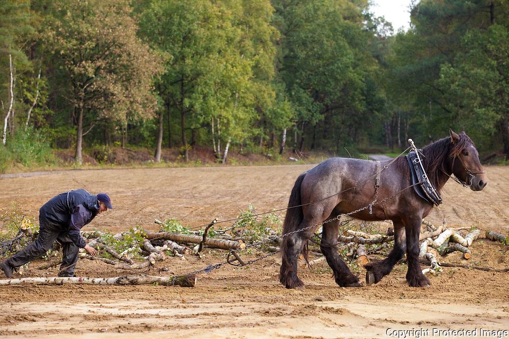 366351-brandhouthappening met oa Kempense Brandhoutgames, domein Teunenberg-Olen