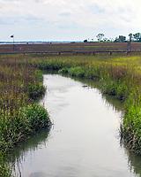 Salt Marshes, Shem Creek Park, Mount Pleasant, South Carolina  photo by Catherine Brown
