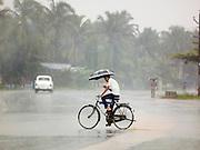 A cyclist holding an umbrella during the monsoon season, Cochin, Kerala, India