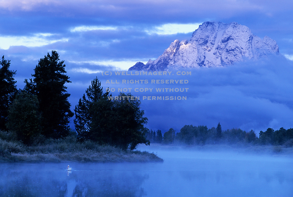 Image of Mt. Moran and the Snake River at Grand Teton National Park, Wyoming, Pacific Northwest by Randy Wells