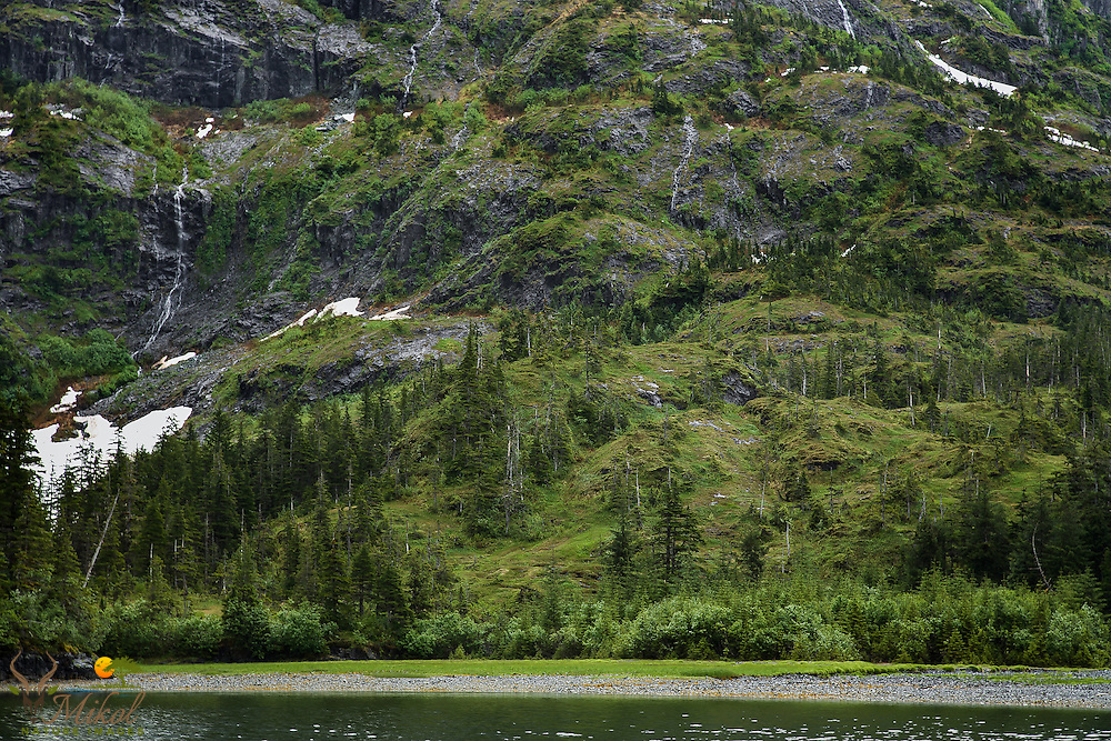 Mountainside with cascades and melting snow in summer, Prince William sound, AK