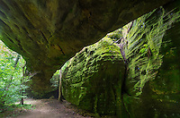 "Mantle Rock is located in rural western Kentucky. The 188 foot long arch is the longest in the US east of the Mississippi River. A thick green moss covers the moist and shady sandstone walls. This place also has historical significance as well. In the harsh winter of 1838-1839 almost 2,000 Cherokee Indians camped in the area as they waited for the nearby Ohio River to thaw. These Native Americans were forced by the government to relocate from the Deep South to present-day Oklahoma. A large percentage of them tragically died during the long journey, on what is known as ""The Trail of Tears.""<br />