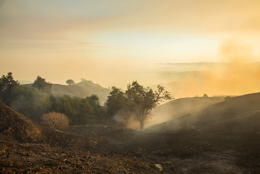 The northern California wildfires of 2017 where a series of late-season fires driven by local wind events that reached hurricane force. In this image,<br /> <br /> the Pocket Fire near Geyserville, CA on October 13, 2017