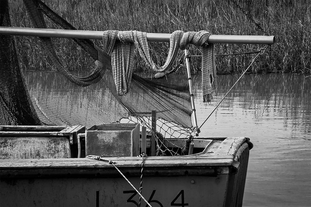 Fish Netting, Alviso, CA