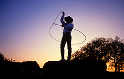 silhouette of a cowboy swinging his lasso