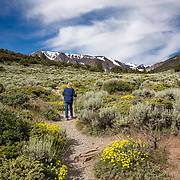 Hiking the Parker Lake Trail in the Ansel Adams Wilderness.