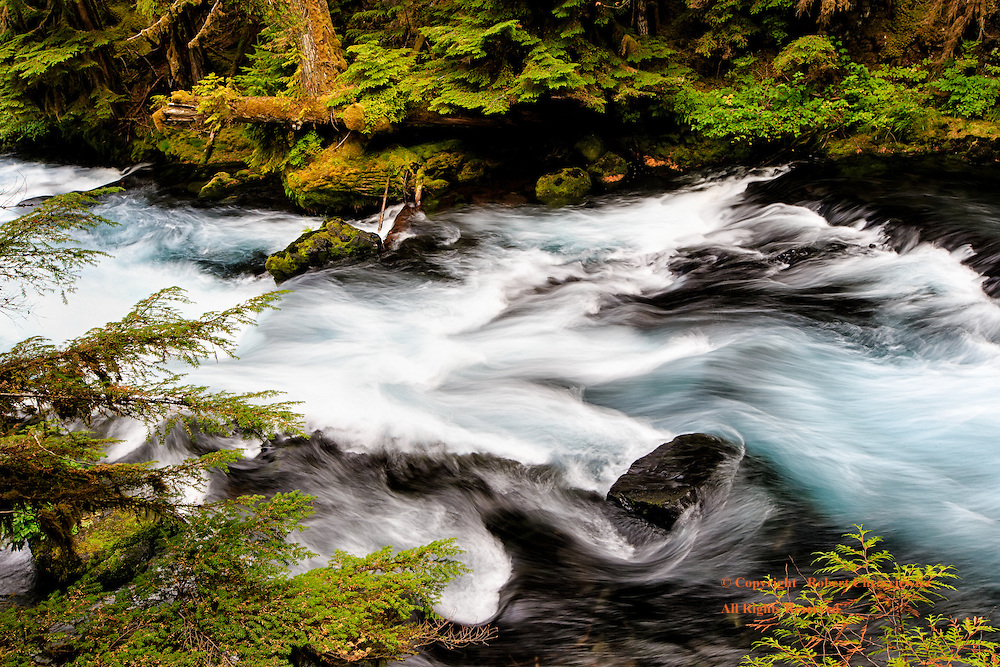 Koosah Rapids: The raw power of the McKenzie River is felt as the water surges through the rocky landscape near Koosah Water Falls, Oregon USA.