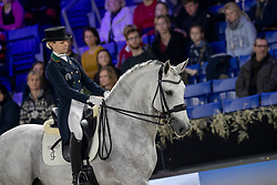 Caetano Maria, POR, Coroado<br /> Vlaanderens Kerstjumping - Memorial Eric Wauters - Mechelen 2018<br /> © Hippo Foto - Dirk Caremans<br /> 29/12/2018