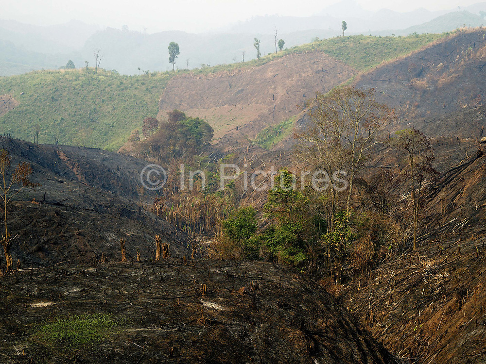 Slash and burn landscape, Phongsaly province, Lao PDR.  Swidden cultivation or 'hai' in Lao consists of cutting the natural vegetation, leaving it to dry and then burning it for temporary cropping of the land, the ash acting as a natural fertiliser. Shifting cultivation practices, although remarkably sustainable and adapted to their environment in the past, have come under increasing stress in recent decades and are now starting to be a major problem in Lao PDR, causing widespread deforestation and watershed degradation.