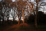 Sundown in Highbury Park in Kings Heath on 6th Febuary 2020 in Birmingham, United Kingdom. Highbury Park is a wooded area located on the borders between Moseley and Kings Heath.