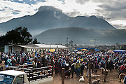 The Saturday animal market bustles in Otavalo, Ecuador, South America. The culturally vibrant town of Otavalo attracts many tourists to a valley of the Imbabura Province of Ecuador, surrounded by the peaks of Imbabura 4,610m, Cotacachi 4,995m, and Mojanda volcanoes. The indigenous Otavaleños are famous for weaving textiles, usually made of wool, which are sold at the famous Saturday market and smaller markets during the rest of the week. The Plaza del Ponchos and many shops tantalize buyers with a wide array of handicrafts. Nearby villages and towns are also famous for particular crafts: Cotacachi, the center of Ecuador's leather industry, is known for its polished calf skins; and San Antonio specializes in wood carving of statues, picture frames and furniture. Otavaliña women traditionally wear distinctive white embroidered blouses, with flared lace sleeves, and black or dark over skirts, with cream or white under skirts. Long hair is tied back with a 3cm band of woven multi colored material, often matching the band which is wound several times around their waists. They usually have many strings of gold beads around their necks, and matching tightly wound long strings of coral beads around each wrist. Men wear white trousers, and dark blue ponchos. Otavalo is also known for its Inca-influenced traditional music (sometimes known as Andean New Age) and musicians who travel around the world.