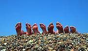 A row of eight bare feet, four people, on a shingle beach against blue sky