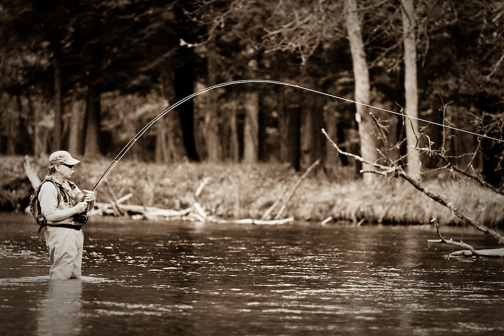 A Fly fisherman fights a chinook salmon (King salmon) on the Pere Marquette River in Michigan.