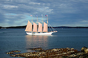 """Afternoon sunlight on the schooner """"Margaret Todd"""" sailing out of Bar Harbor, Maine."""
