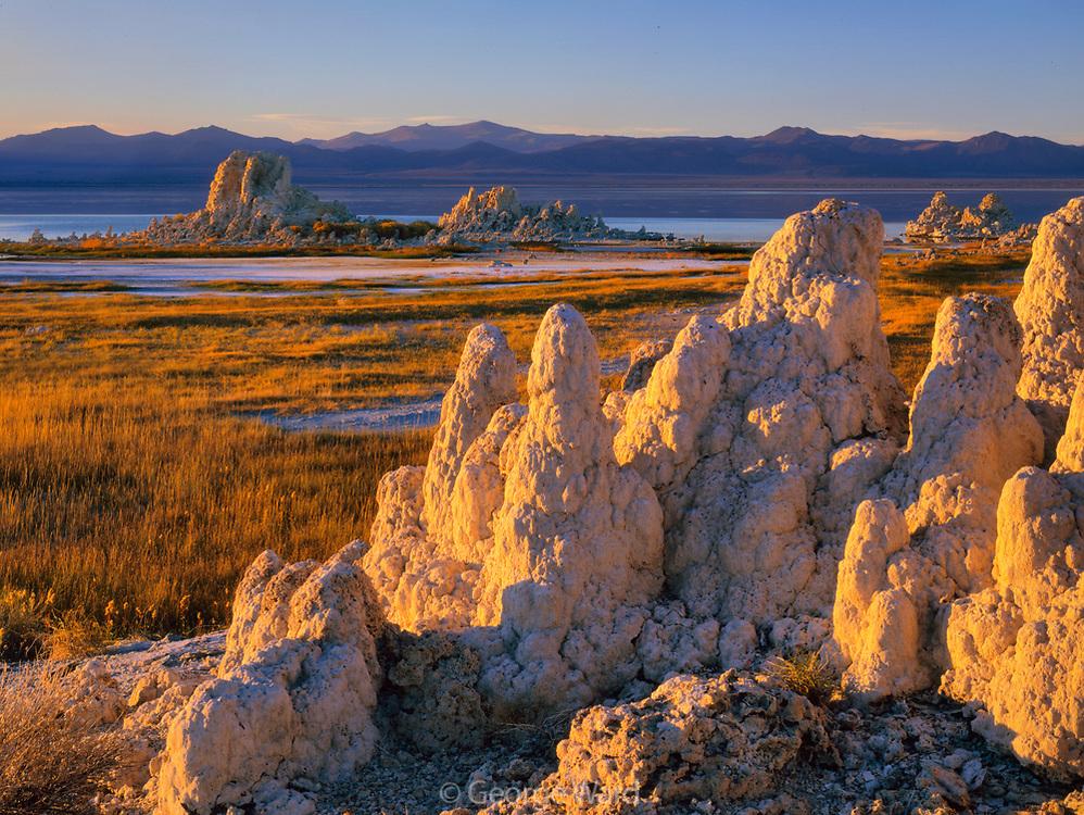 Afternoon Sun on Tufa at Simons Spring, Mono Lake, Mono Basin National Forest Scenic Area, California