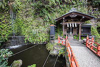"""Zeniarai Benten Shrine in Kamakura is famous with people who wish to wash their money.  Zeniarai means """"coin washing"""" as people believe that money washed in the shrine's spring will increase or double.  Zeniarai Benten Shrine is an example of the fusion between the Shinto and Buddhist religions with many aspects of the respective religions melded into one shrine. Here  the unique custom of coin washing started and the Shrine maintains this belief of the power of enrichment. For this reason it isone of the most popular and busy shrines in Kamakura.  Bamboo baskets and ladles are available on the shelf to help with the money washing."""