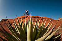 A mountain biker rides slickrock in Sedona, Arizona.