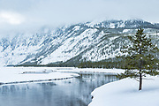 Madison River from Seven Mile Bridge during winter