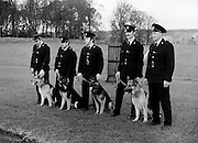The passing out parade of four new dogs for the Garda Canine Unit. The new recruits parade with their handlers (l-r): Garda Pat Griffin, Tralee, Co. Kerry with 'Sam'; Garda Vincent Turner, Limerick, with 'Glenn'; Garda John Culkin, Ballina, Co. Mayo with 'Rover'; Garda Thomas Donnelly, Raheny, Dublin with 'Duke' and Sergeant Brendan Maher, Wexford who is in charge of the canine unit.<br />