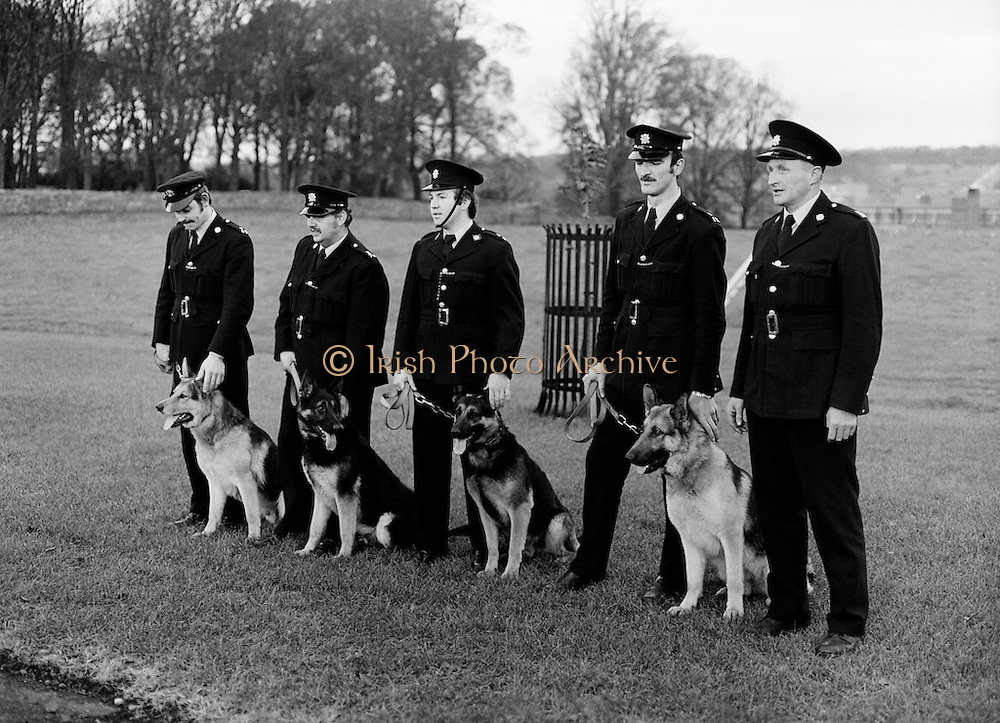 The passing out parade of four new dogs for the Garda Canine Unit. The new recruits parade with their handlers (l-r): Garda Pat Griffin, Tralee, Co. Kerry with 'Sam'; Garda Vincent Turner, Limerick, with 'Glenn'; Garda John Culkin, Ballina, Co. Mayo with 'Rover'; Garda Thomas Donnelly, Raheny, Dublin with 'Duke' and Sergeant Brendan Maher, Wexford who is in charge of the canine unit.<br /> 22/12/1979