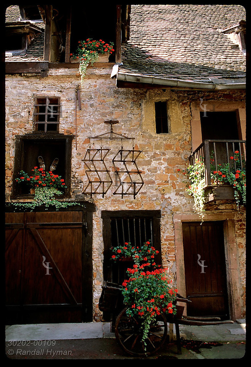 Red flowers adorn facade of old carriage house in the historic city center of Colmar, Alsace. France