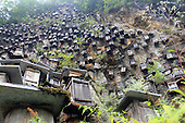 Hundreds Of Beehives Hung On Cliff To Attract Bees