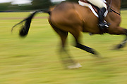 Horse and rider in the cross-country phase of an eventing competition, Charlton Park, Wiltshire, United Kingdom