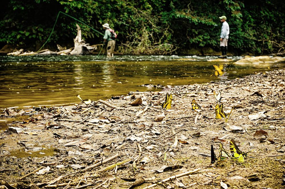 Bolivia dorado fishing