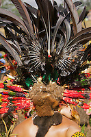 Headdress detail with Stephanie's Astrapia Birds of Paradise feathers..Mount Hagen, Western Highlands Province, Papua New Guinea.