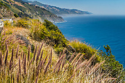 Lookling south on Highway 1 along the Big Sur coast, toward Partington Point, and southward beyond.