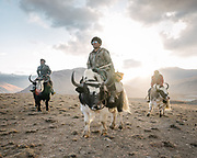 "Sidol (left), Jumagul (Center) and Assan Khan (Right). Men returning on their yaks after  coming back from checking the grass level, in prevision of moving their herd to a high pasture. Life in Baiqara, a Wakhi High pasture inhabited for about 6 months of the year, from May until October. Guiding and photographing Paul Salopek while trekking with 2 donkeys across the ""Roof of the World"", through the Afghan Pamir and Hindukush mountains, into Pakistan and the Karakoram mountains of the Greater Western Himalaya."