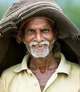 A rice farmer during the monsoon rains, Mangalore, Karnataka, India.