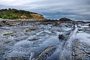 Curio Bay, petrified forest, Catlins, New Zealand