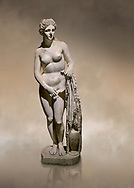 Roman statue of Aphrodite. Marble. Perge. 2nd century AD. Inv no 2014/191 . Antalya Archaeology Museum; Turkey. Against a warm art background.<br /> <br /> Aphrodite is an ancient Greek goddess associated with love, beauty, pleasure, and procreation. She is identified with the planet Venus, which is named after the Roman goddess Venus, with whom Aphrodite was extensively syncretized. Aphrodite's major symbols include myrtles, roses, doves, sparrows, and swans. .<br /> <br /> If you prefer to buy from our ALAMY STOCK LIBRARY page at https://www.alamy.com/portfolio/paul-williams-funkystock/greco-roman-sculptures.html . Type -    Antalya     - into LOWER SEARCH WITHIN GALLERY box - Refine search by adding a subject, place, background colour, museum etc.<br /> <br /> Visit our ROMAN WORLD PHOTO COLLECTIONS for more photos to download or buy as wall art prints https://funkystock.photoshelter.com/gallery-collection/The-Romans-Art-Artefacts-Antiquities-Historic-Sites-Pictures-Images/C0000r2uLJJo9_s0