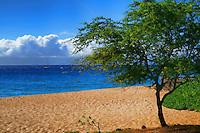 Kāʻanapali, Maui