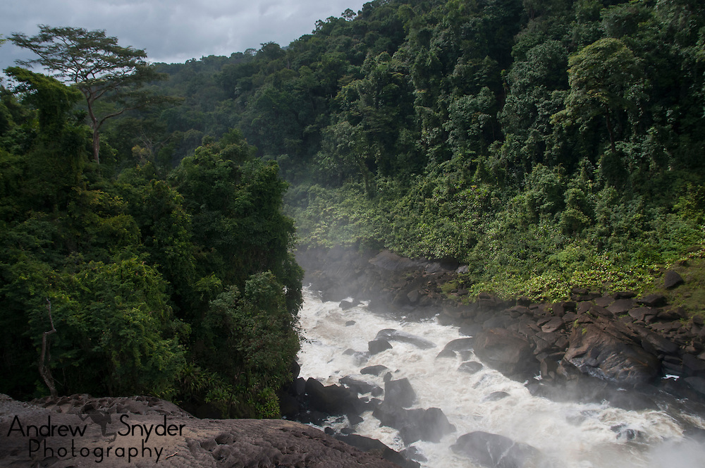 A view from above the falls on the upper Potaro River, Guyana.