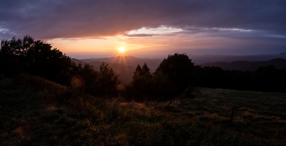 Panorama of coniferous forest and mountain landscape at sunrise, Stosswihr, Vosges, France