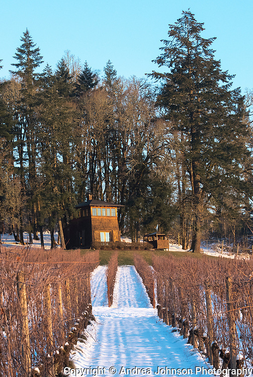 Witer snows blanket Beacon Hill Winery and Vineyard, Yamhill-Carlton AVA, Willamette Valley, Oregon