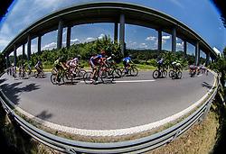 Peloton at Ravbarkomanda bridge during Stage 1 of 24th Tour of Slovenia 2017 / Tour de Slovenie from Koper to Kocevje (159,4 km) cycling race on June 15, 2017 in Slovenia. Photo by Vid Ponikvar / Sportida