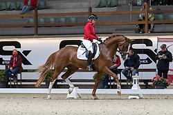 082, Sunnyboy van de Kempenhoeve, Dries Mieke<br /> Hengstenkeuring BWP- Azelhof - Lier  2021<br /> <br /> © Hippo Foto - Dirk Caremans<br /> 12/04/2021