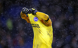 Brighton & Hove Albion goalkeeper Mathew Ryan shows his dejection during the Premier League match at the AMEX Stadium, Brighton.