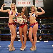 """The Telemundo Ring Girls pose prior to a """"Boxeo Telemundo""""  boxing match at the Kissimmee Civic Center on Friday, July 18, 2014 in Kissimme, Florida.  (AP Photo/Alex Menendez)"""