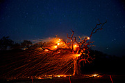 In this long-exposure photograph, a tree burns along Highway 128 as the strong wind sends embers flying during the Kincade Fire on Wednesday, Oct. 30, 2019, in Calistoga, Calif.