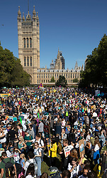 © Licensed to London News Pictures. 20/09/2019. London, UK. Activists fill Victoria Tower Gardens next to Parliament as they take part in the  Global Climate Strike demonstration. Thousands of similar actions are taking place all over the UK and the rest of the world. Photo credit: Peter Macdiarmid/LNP