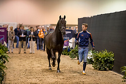 Gal Edward, NED, Glock's Voice<br /> Training session<br /> FEI World Cup Dressage Final, Omaha 2017 <br /> © Hippo Foto - Jon Stroud<br /> 29/03/2017